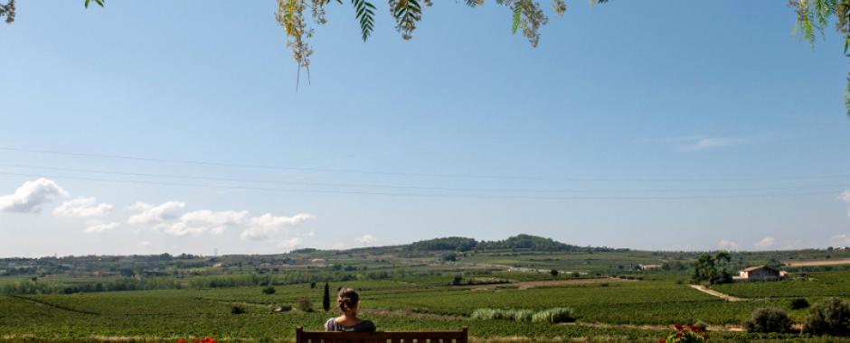 Mit dem Fahrrad durch die Weinberge des Penedes